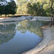 wetland after