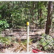 bushland maintenance