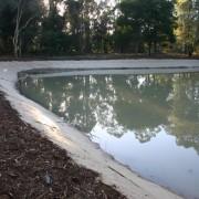 wetland after2