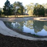 wetland after5