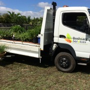 bushcare truck with plants3